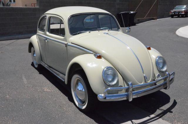 Seller of Classic Cars - 1964 Volkswagen Beetle - Classic (Panama beige/Grey)