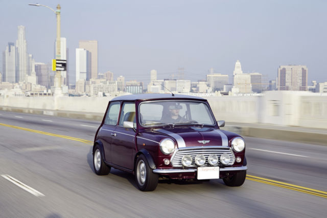 1900 Mini Classic Mini (Amaranth Metallic/Leather black  w/ flecked beige cloth insert)