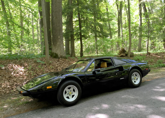 1978 Ferrari 308 (Black/Tan)
