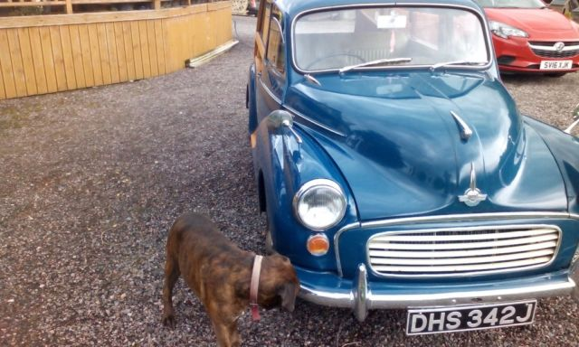 1971 Morris Minor Traveller (Blue/Brown)