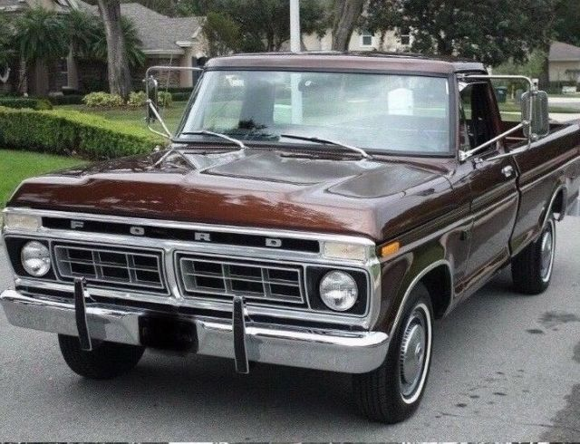 1976 Ford F-150 (Metallic Chestnut/Black)