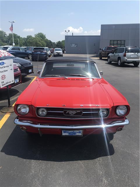 1966 Ford Mustang (Red/--)