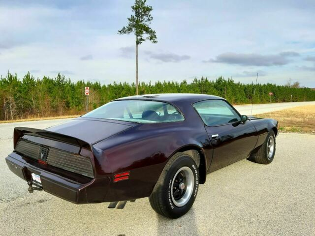 1979 Pontiac Firebird (Burgundy/White)