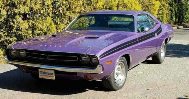 1971 Dodge Challenger (Purple/Black)